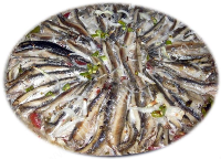 ANCHOAS AL VAPOR