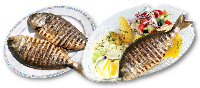 GILTHEAD SEABREAM GRILLED