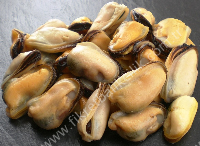 MUSSELS MEAT